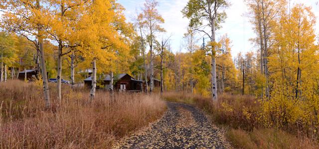 photo-fall-road